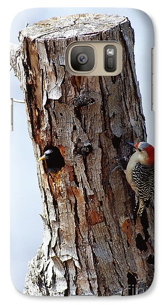 Woodpecker And Starling Fight For Nest Galaxy Case by Gregory G. Dimijian