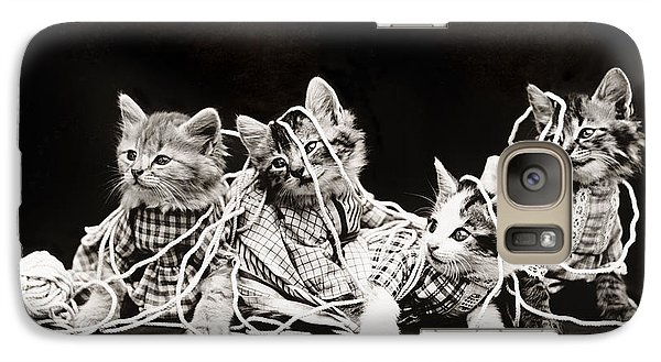 Frees Kittens, C1914 Galaxy Case by Granger
