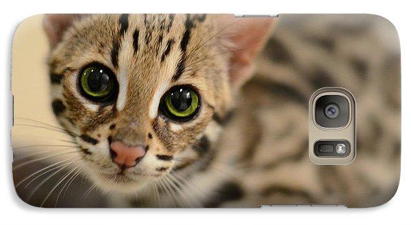 Asian Leopard Cub Galaxy Case by Laura Fasulo