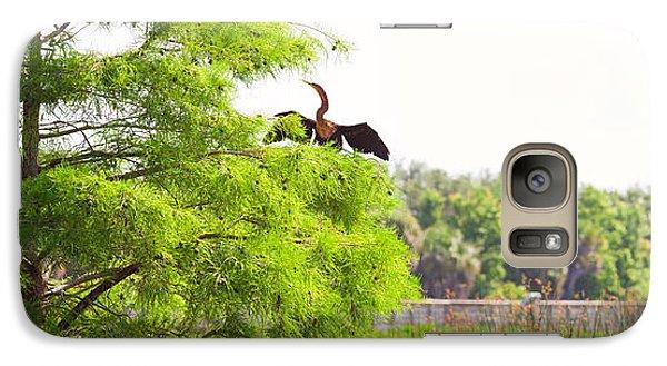 Anhinga Anhinga Anhinga On A Tree Galaxy S7 Case by Panoramic Images