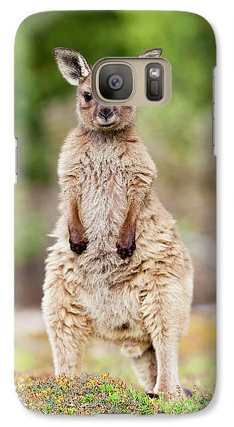 Western Grey Kangaroo (macropus Galaxy Case by Martin Zwick