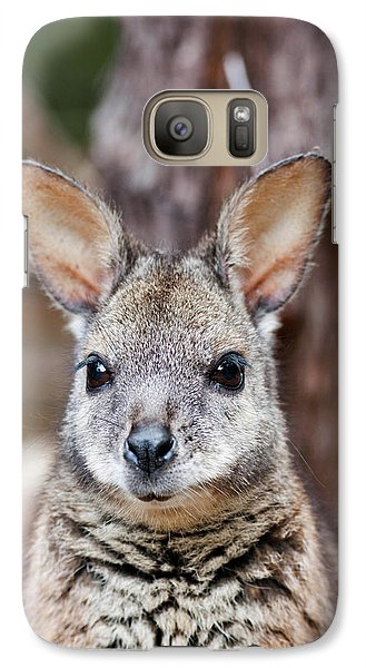 Tammar Wallaby (macropus Eugenii Galaxy Case by Martin Zwick