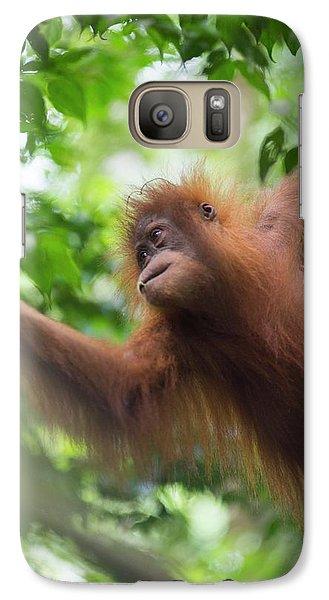 Sumatran Orangutan Galaxy Case by Scubazoo
