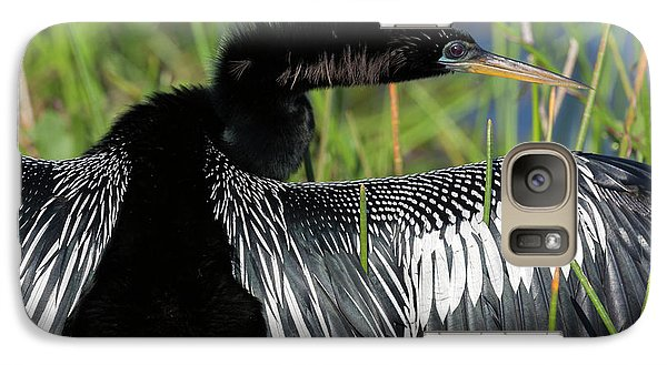 Usa, Florida, Everglades National Park Galaxy Case by Jaynes Gallery
