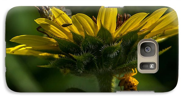 A Bugs World Galaxy S7 Case by Ernie Echols