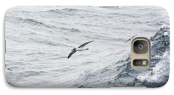 A Grey Headed Albatross Galaxy Case by Ashley Cooper