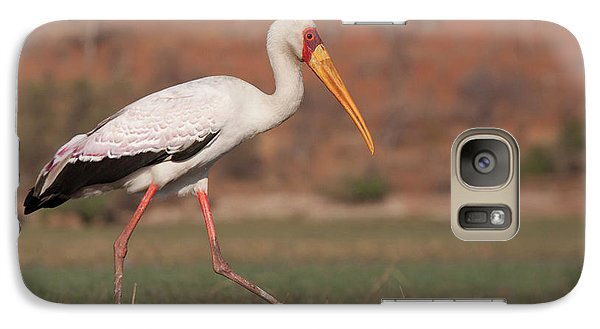 Africa, Botswana, Chobe National Park Galaxy S7 Case by Jaynes Gallery