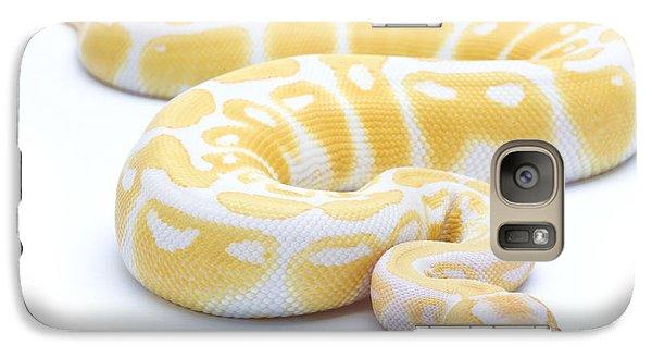 Albino Royal Python Galaxy S7 Case by Michel Gunther
