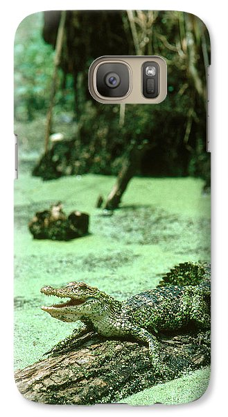 American Alligator Galaxy S7 Case by Gregory G. Dimijian, M.D.