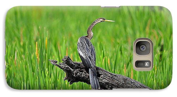 American Anhinga Galaxy S7 Case by Al Powell Photography USA