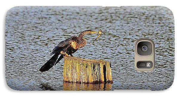 American Anhinga Angler Galaxy Case by Al Powell Photography USA