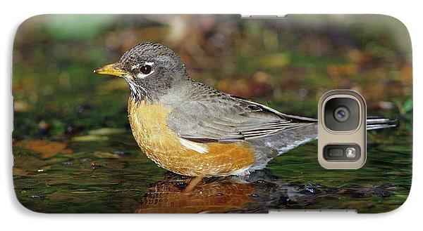 American Robin (turdis Migratorius Galaxy Case by Richard and Susan Day