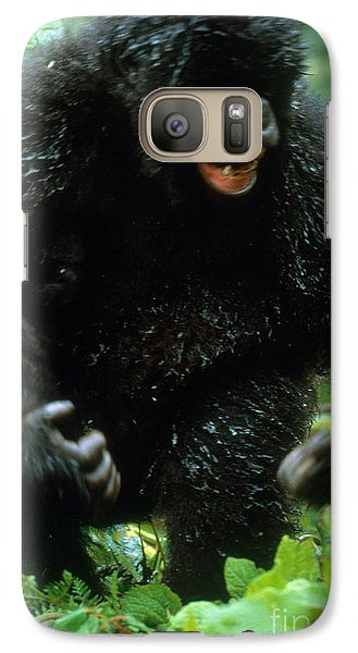 Angry Mountain Gorilla Galaxy Case by Art Wolfe