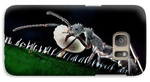 Ant Carrying Larva Galaxy Case by Melvyn Yeo