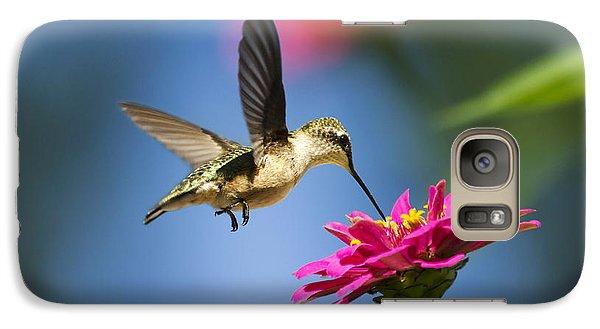 Art Of Hummingbird Flight Galaxy S7 Case by Christina Rollo