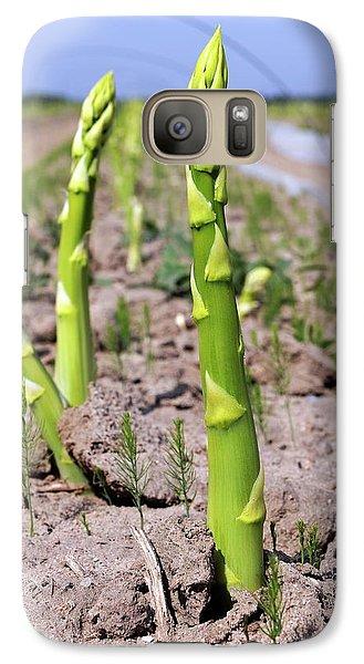Asparagus Field Galaxy Case by Bildagentur-online/mcphoto-schulz