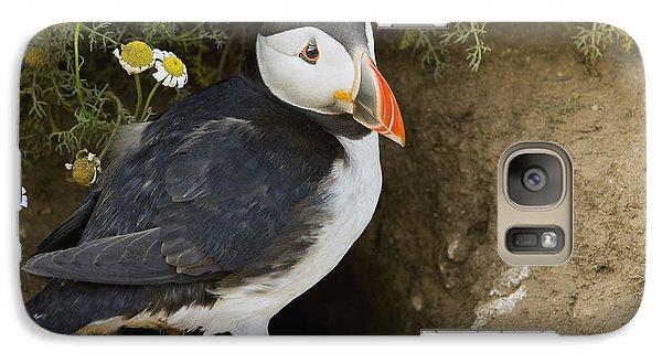 Atlantic Puffin At Burrow Skomer Island Galaxy Case by Sebastian Kennerknecht