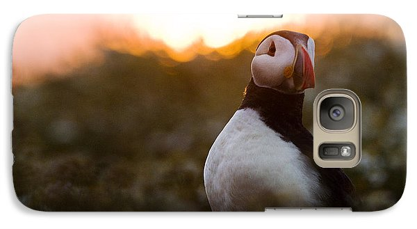 Atlantic Puffin At Sunrise Skomer Galaxy Case by Sebastian Kennerknecht