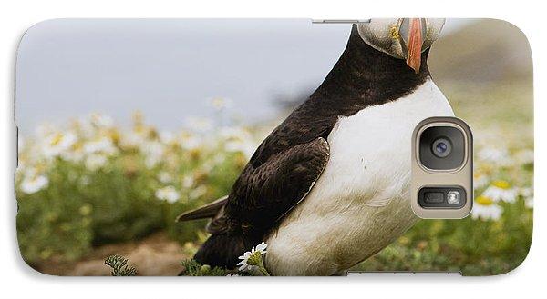 Atlantic Puffin In Breeding Plumage Galaxy Case by Sebastian Kennerknecht