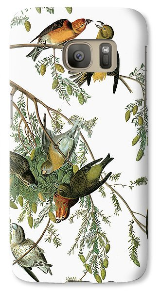 Audubon Crossbill Galaxy S7 Case by Granger