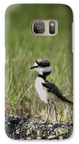 Baby Killdeer 2 Galaxy Case by Thomas Young