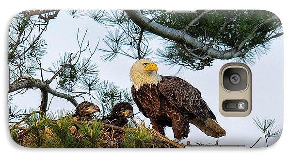 Bald Eagle With Eaglets  Galaxy S7 Case by Everet Regal