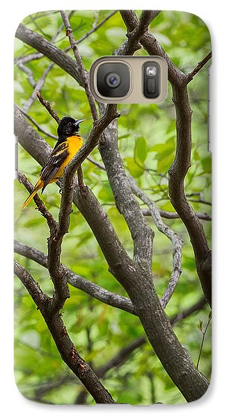 Baltimore Oriole Galaxy Case by Bill Wakeley