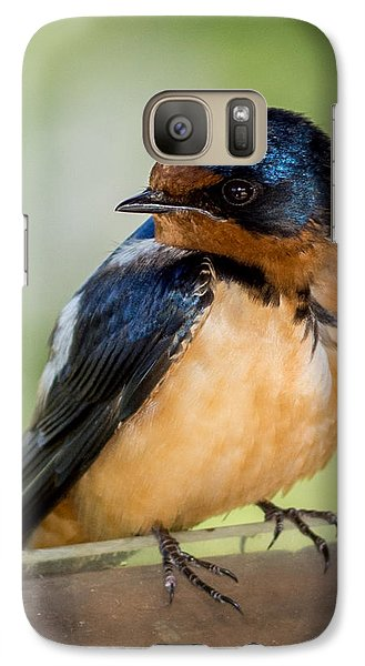 Barn Swallow Galaxy S7 Case by Ernie Echols