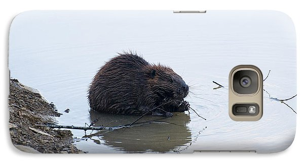 Beaver In The Shallows Galaxy Case by Chris Flees