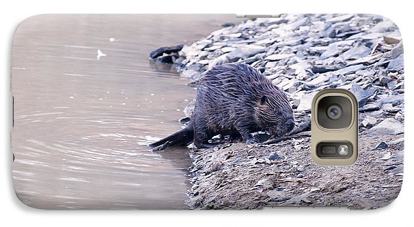 Beaver On Dry Land Galaxy Case by Chris Flees