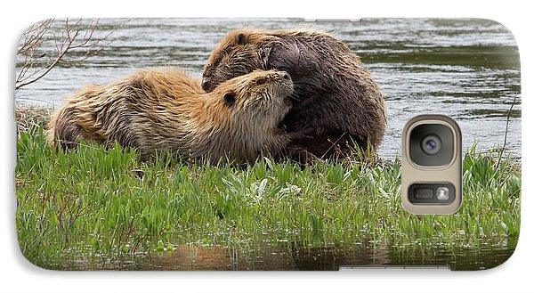 Beaver Pair Grooming One Another Galaxy Case by Ken Archer