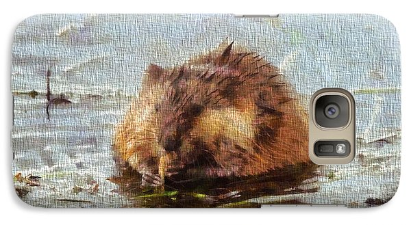 Beaver Portrait On Canvas Galaxy Case by Dan Sproul