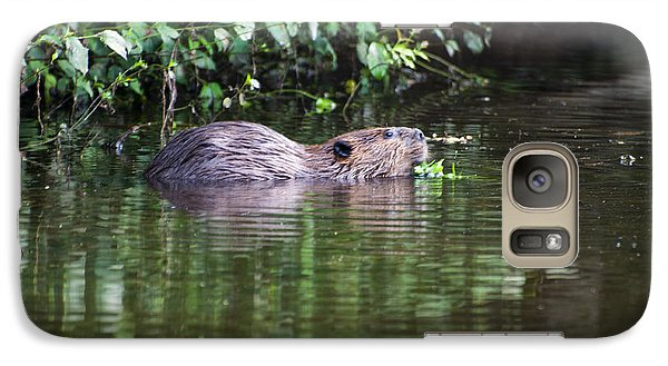 beaver swims in NC lake Galaxy Case by Chris Flees