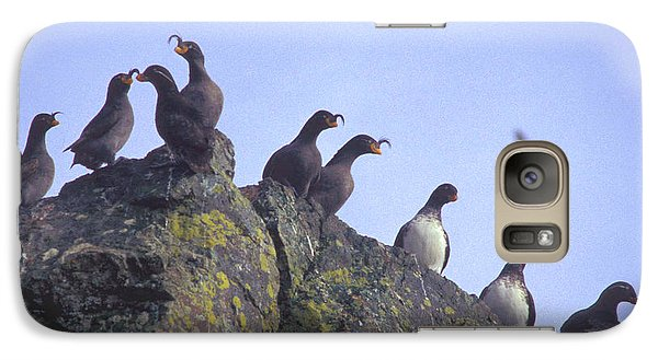 Birds On Rock Galaxy S7 Case by F Hughes