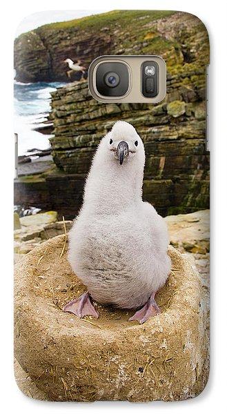 Black-browed Albatross Chick Falklands Galaxy S7 Case by