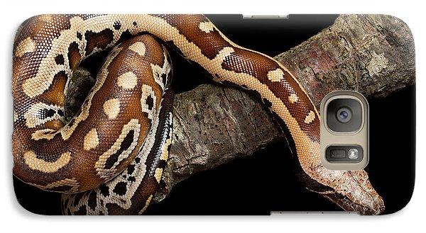 Blood Python Python Brongersmai Galaxy S7 Case by David Kenny