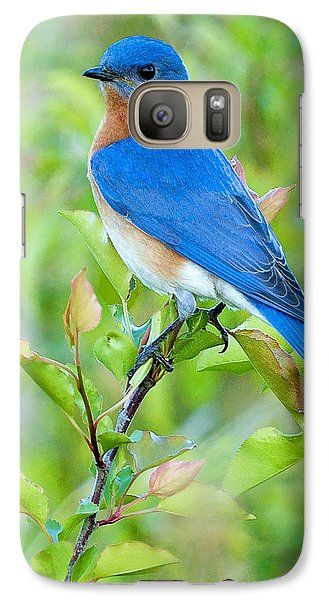 Bluebird Joy Galaxy Case by William Jobes