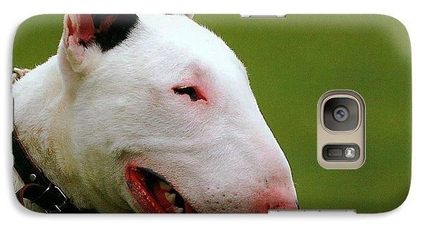 Bull Terrier  Galaxy Case by Marvin Blaine