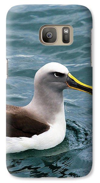 Buller's Albatross (thalassarche Bulleri Galaxy Case by Micah Wright