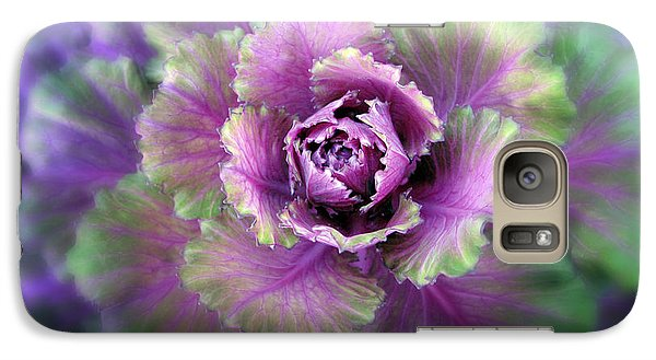 Cabbage Flower Galaxy Case by Jessica Jenney