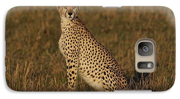 Cheetah On Savanna Masai Mara Kenya Galaxy Case by Hiroya Minakuchi
