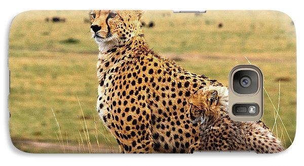 Cheetahs Galaxy Case by Babak Tafreshi