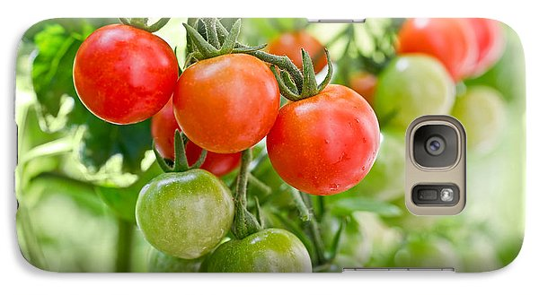 Cherry Tomatoes Galaxy S7 Case by Delphimages Photo Creations
