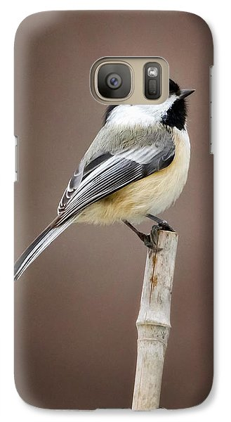 Chickadee Galaxy Case by Bill Wakeley