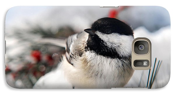 Chilly Chickadee Galaxy Case by Christina Rollo