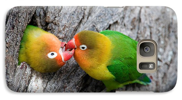 Close-up Of A Pair Of Lovebirds, Ndutu Galaxy S7 Case by Panoramic Images