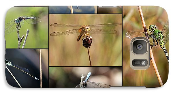 Collage Marsh Life Galaxy S7 Case by Carol Groenen