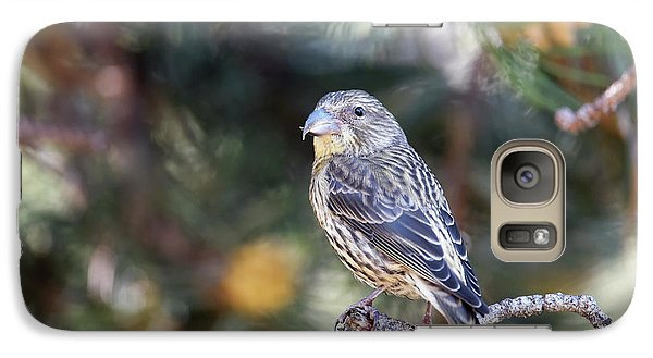 Common Crossbill Juvenile Galaxy S7 Case by Dr P. Marazzi