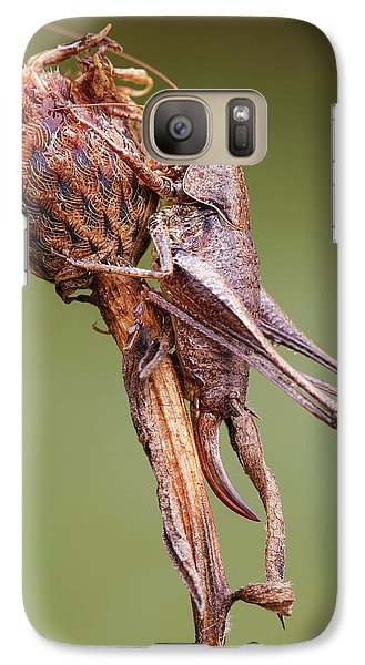 Dark Bush Cricket Galaxy S7 Case by Heath Mcdonald