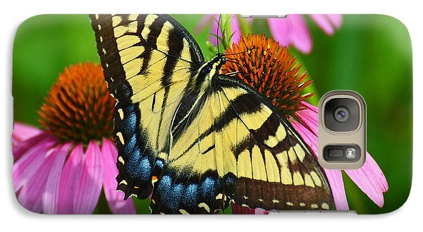 Galaxy Case featuring the photograph Eastern Tiger Swallowtail Female by Rodney Campbell